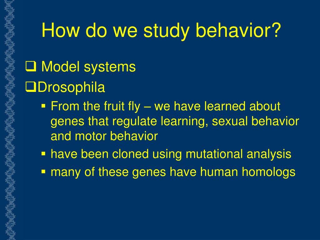 How do we study behavior?