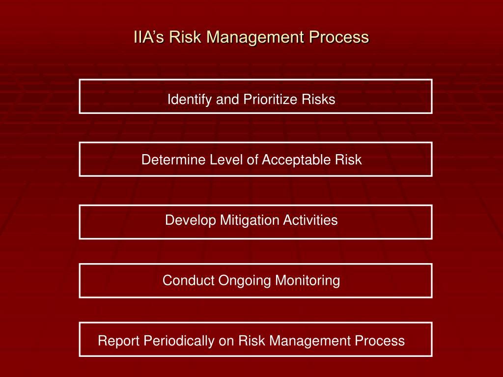 IIA's Risk Management Process