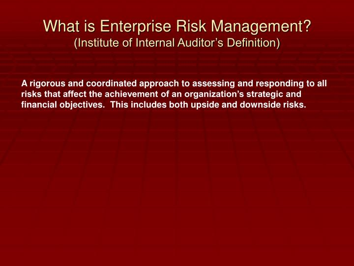 What is enterprise risk management institute of internal auditor s definition
