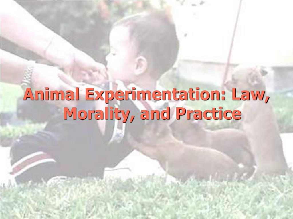 Animal Experimentation: Law, Morality, and Practice