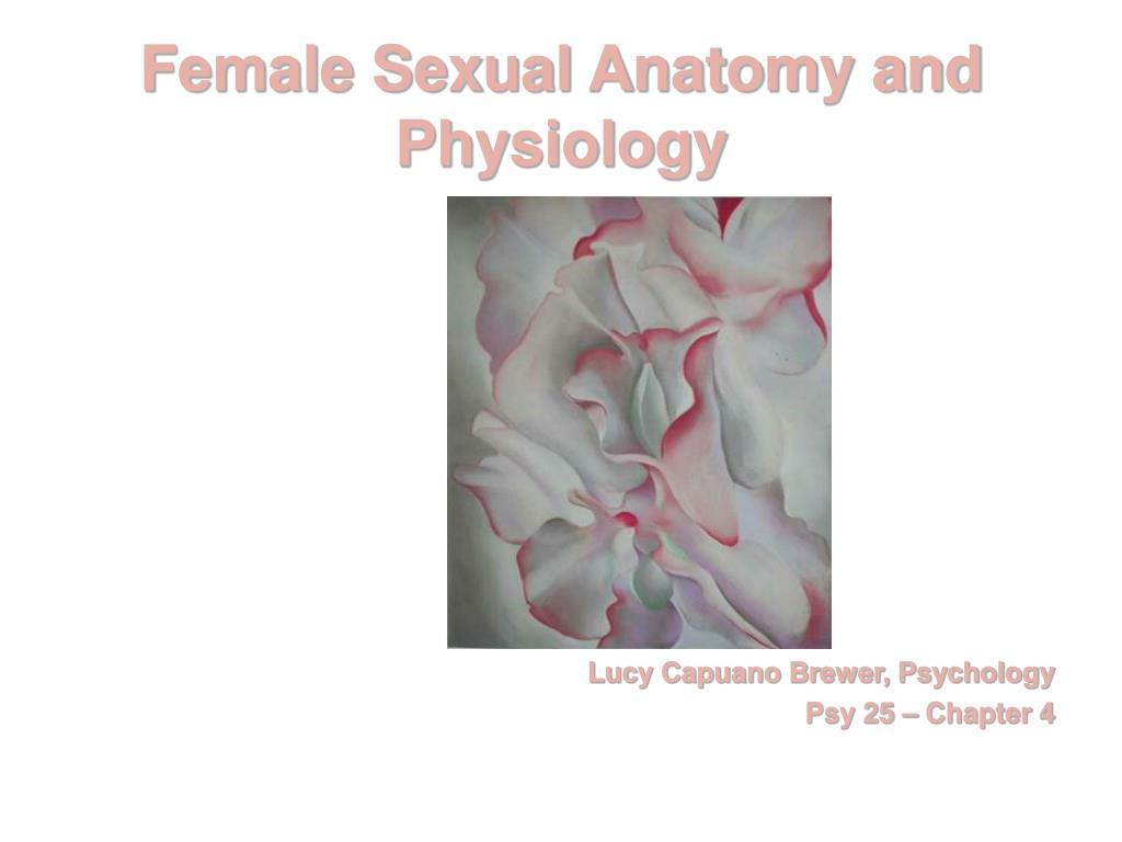 PPT - Female Sexual Anatomy and Physiology PowerPoint Presentation ...