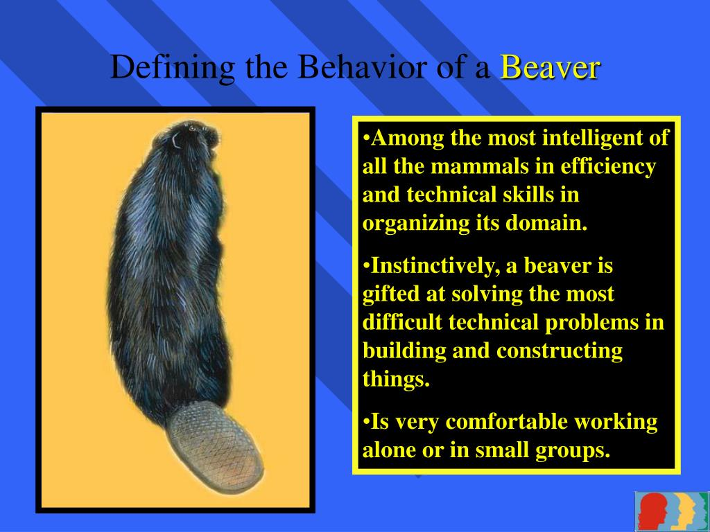 Defining the Behavior of a