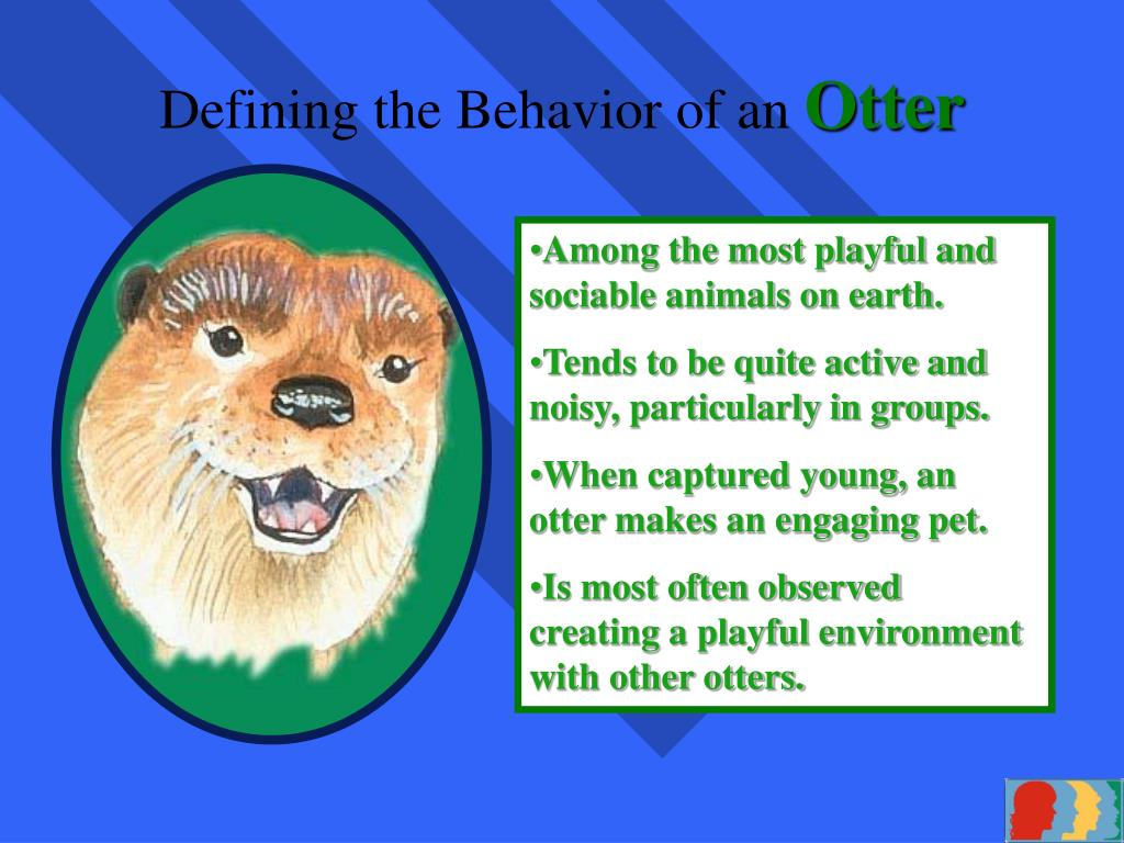 Defining the Behavior of an