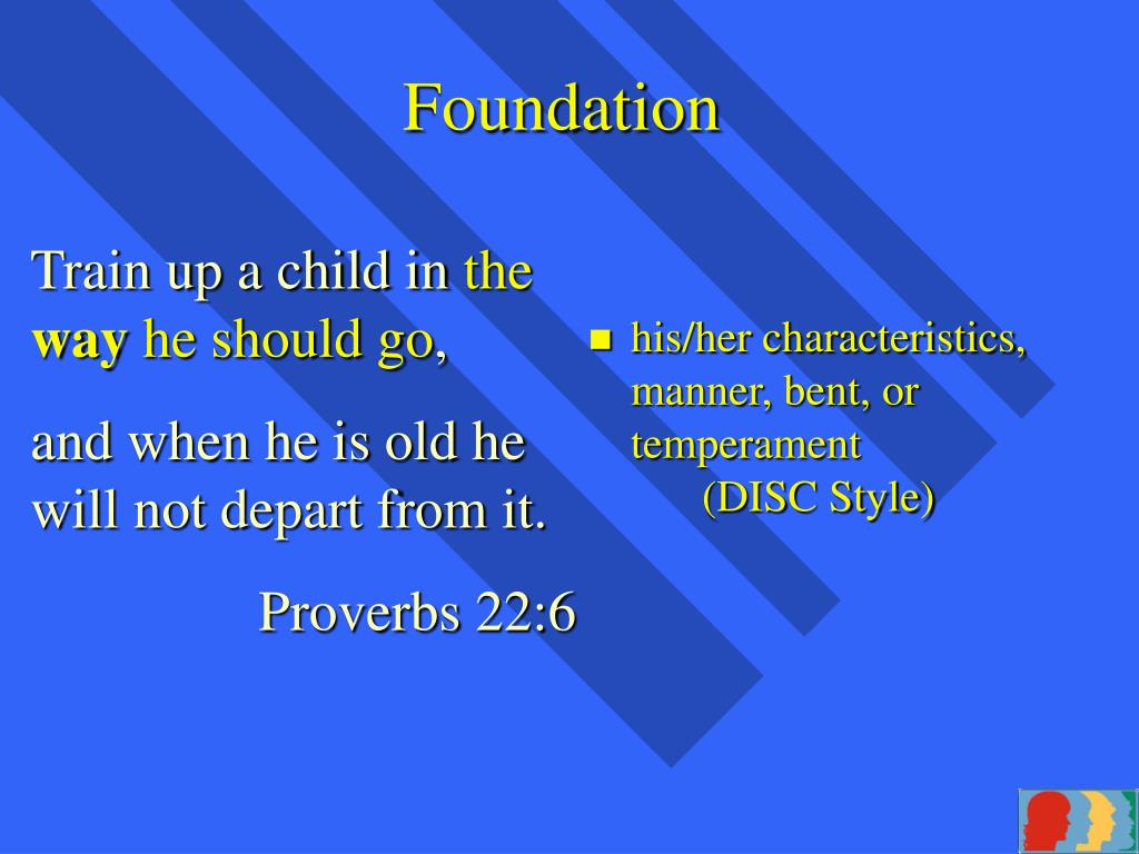 his/her characteristics, manner, bent, or temperament(DISC Style)