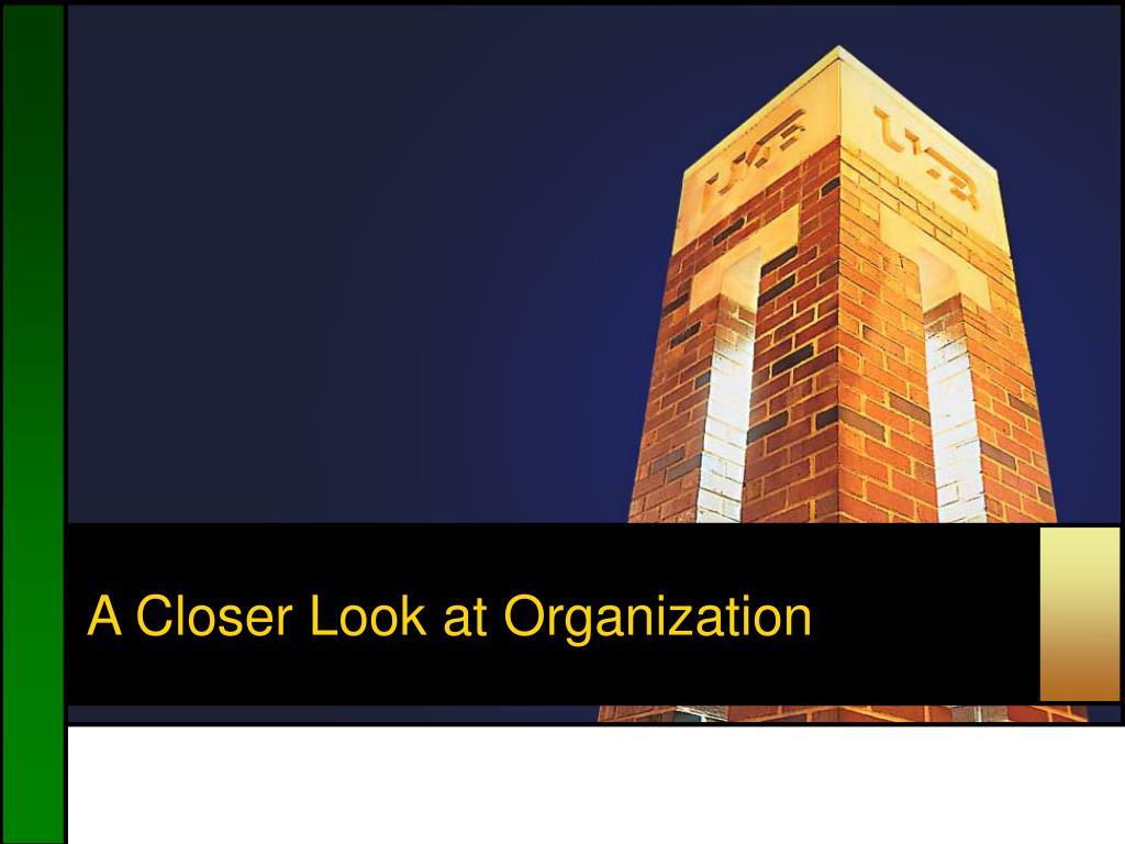 A Closer Look at Organization