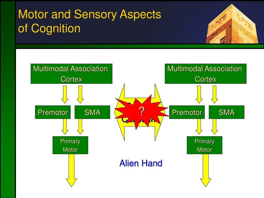 Multimodal Association