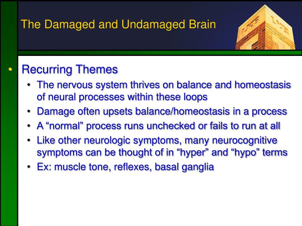 The Damaged and Undamaged Brain