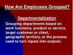 how are employees grouped