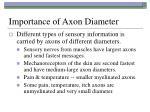 importance of axon diameter