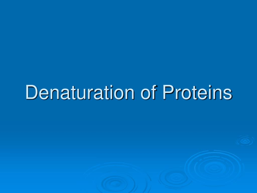 denaturation of proteins use in lab Why is urea so good at denaturing proteins is coagulation and the denaturation of protein the same or if urea is so good at denaturing proteins.