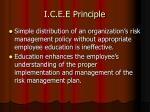 i c e e principle26