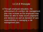 i c e e principle27