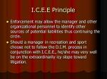 i c e e principle28