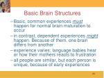 basic brain structures23