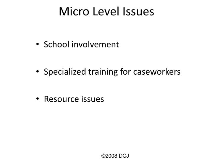 Micro Level Issues