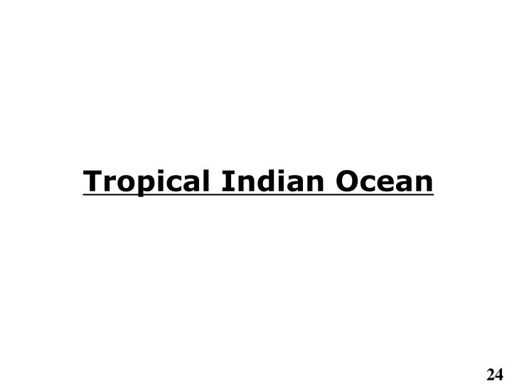 Tropical Indian Ocean