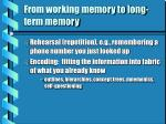 from working memory to long term memory