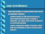 long term memory17