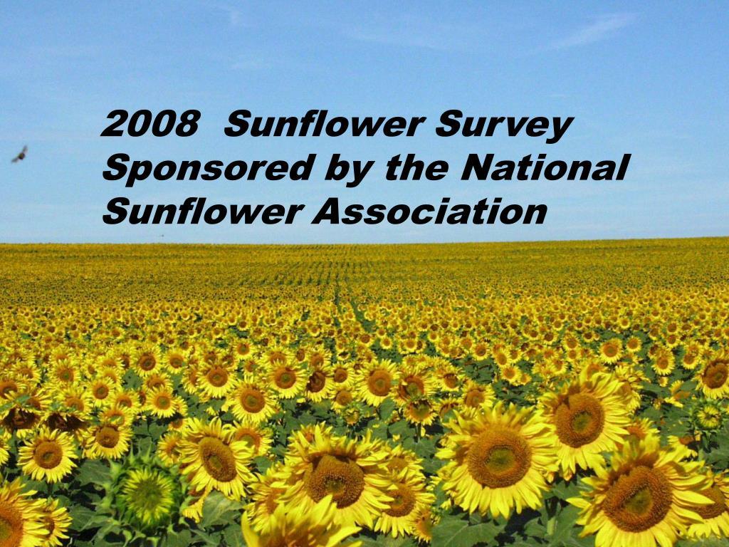 2008  Sunflower Survey Sponsored by the National Sunflower Association