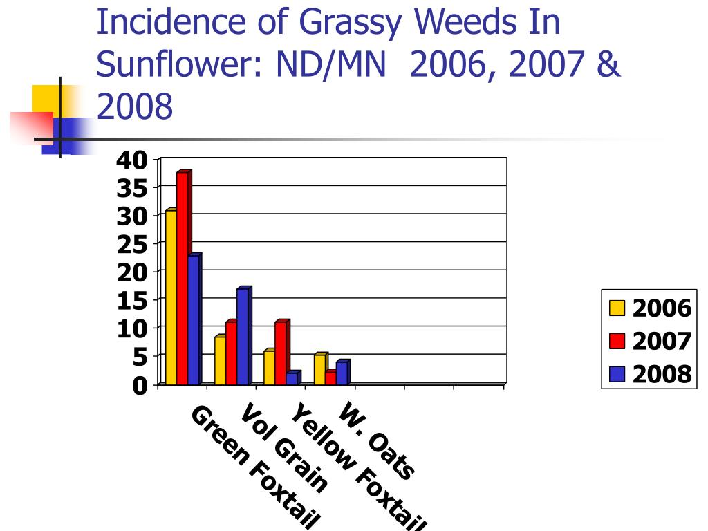 Incidence of Grassy Weeds In Sunflower: ND/MN  2006, 2007 & 2008