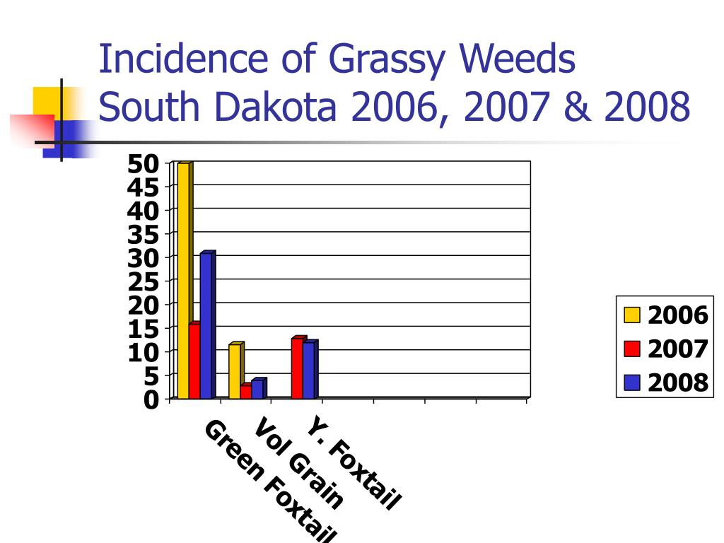 Incidence of Grassy Weeds