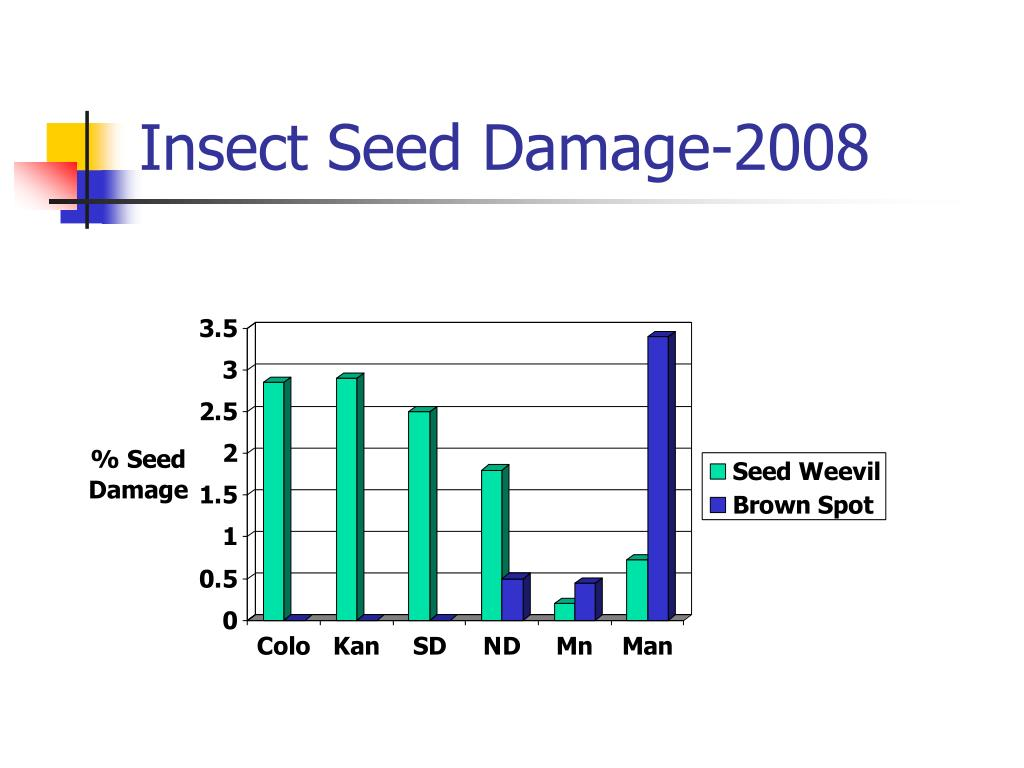 Insect Seed Damage-2008