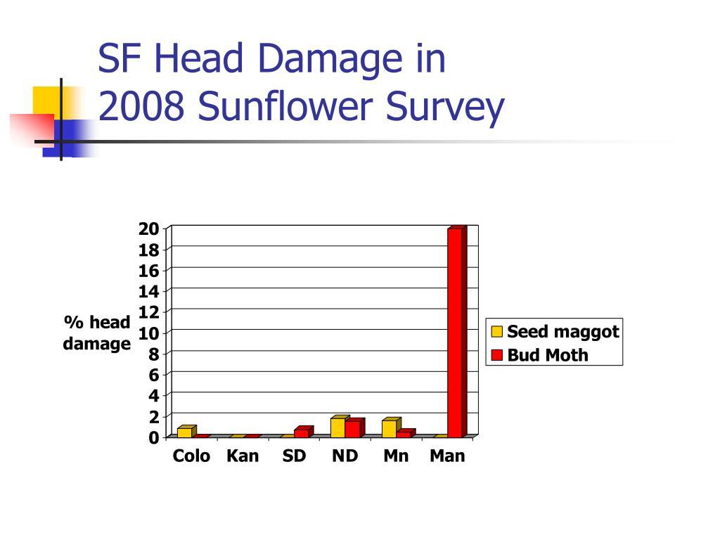 SF Head Damage in