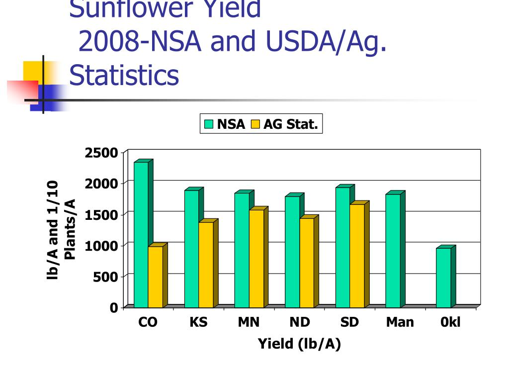 Sunflower Yield
