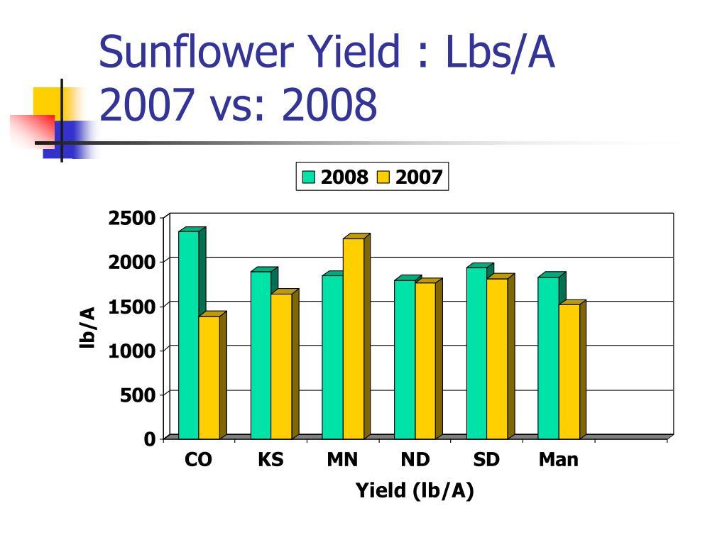 Sunflower Yield : Lbs/A