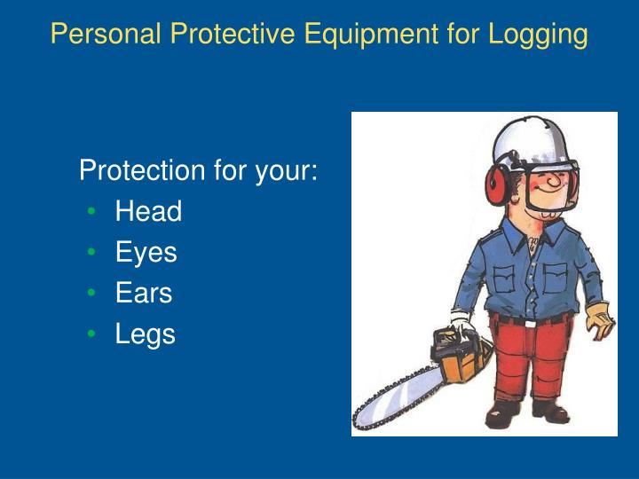 Personal Protective Equipment for Logging