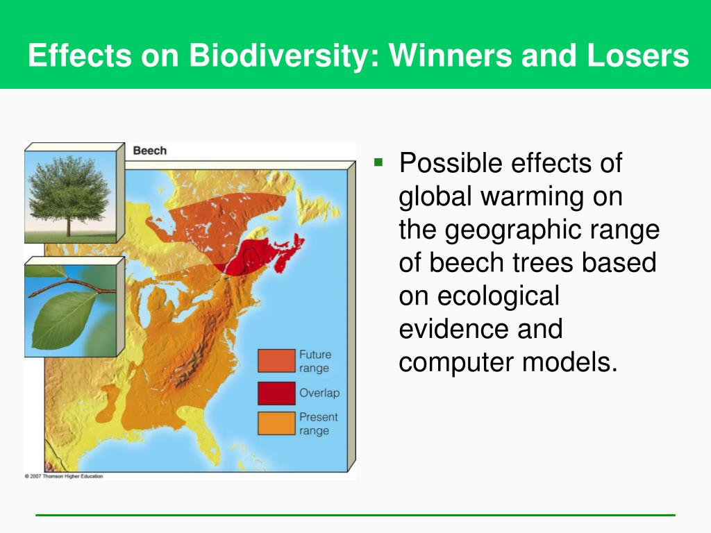 Effects on Biodiversity: Winners and Losers