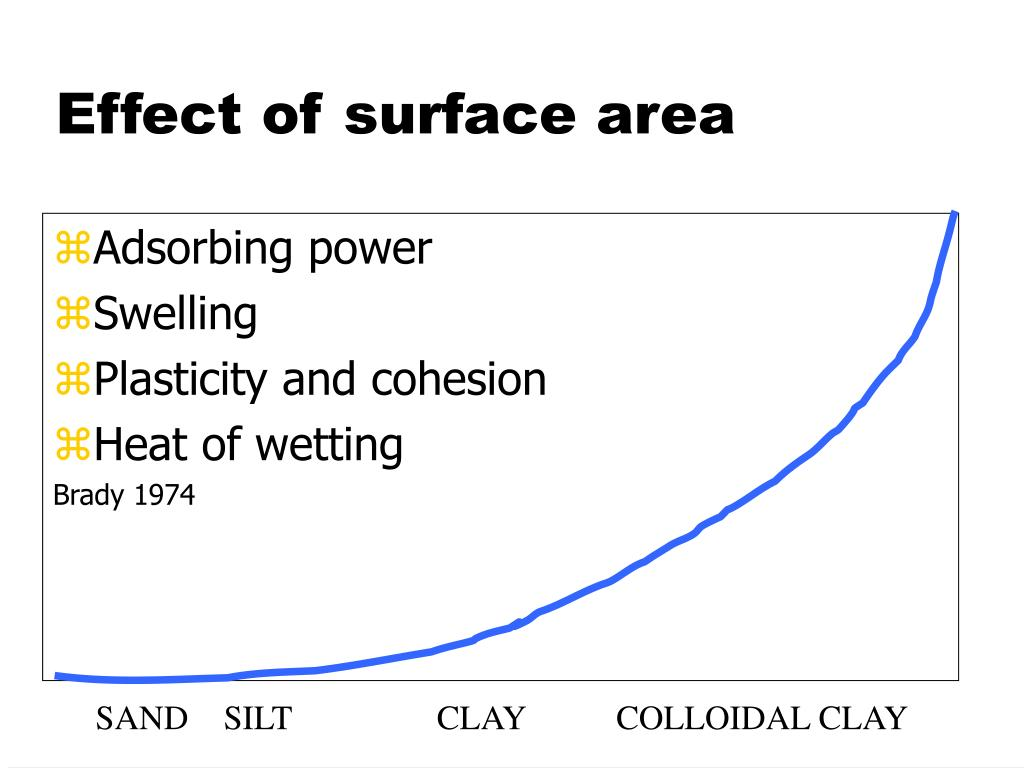 Effect of surface area