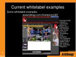 current whitelabel examples
