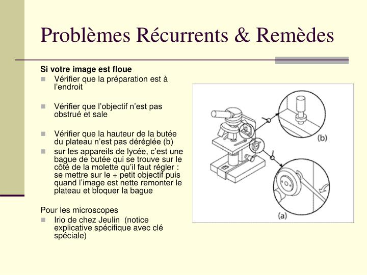 Problèmes Récurrents & Remèdes