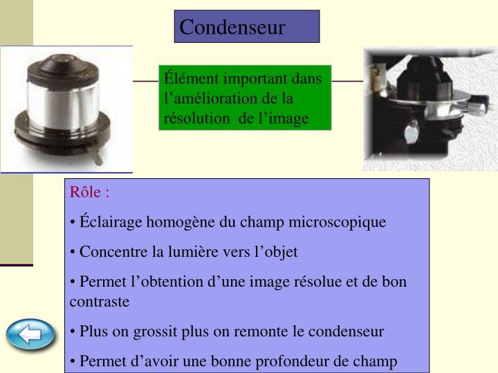 Condenseur