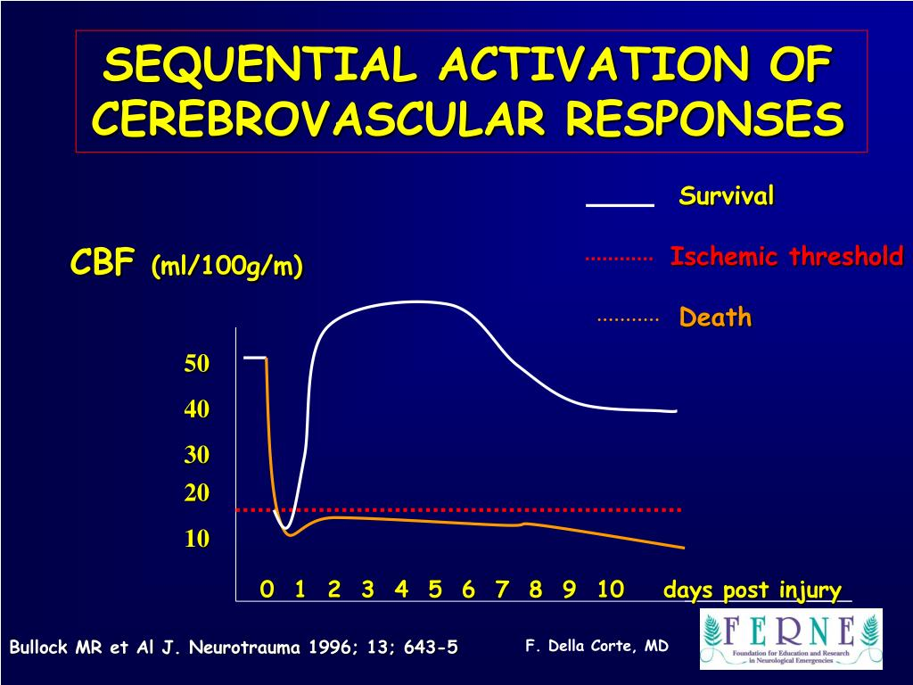SEQUENTIAL ACTIVATION OF CEREBROVASCULAR RESPONSES