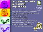 key elements of youth development programming