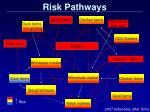 risk pathways