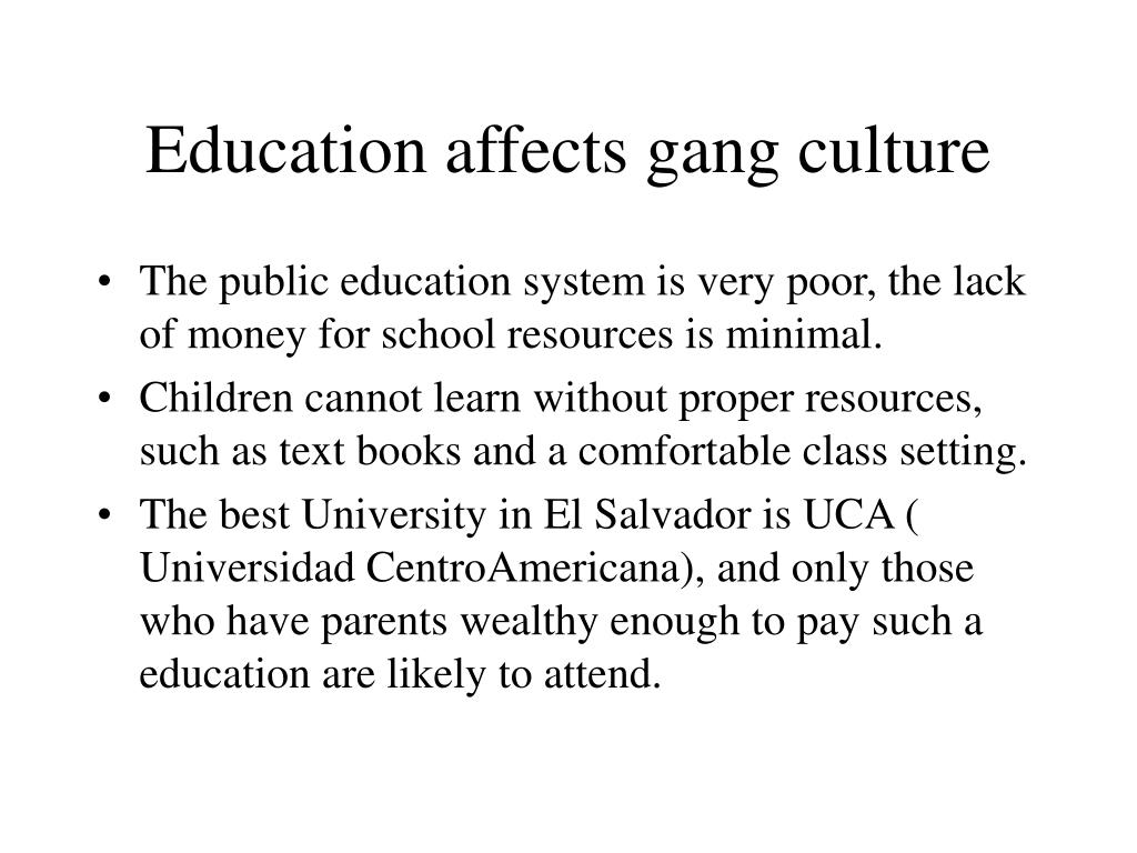 Education affects gang culture