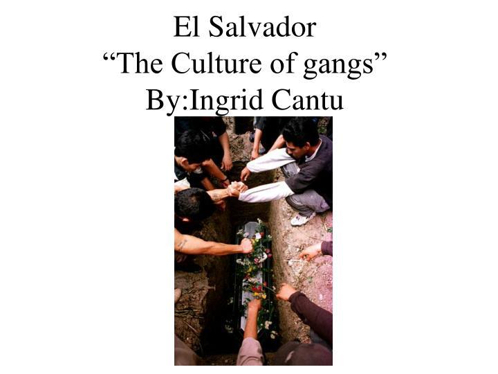 El salvador the culture of gangs by ingrid cantu