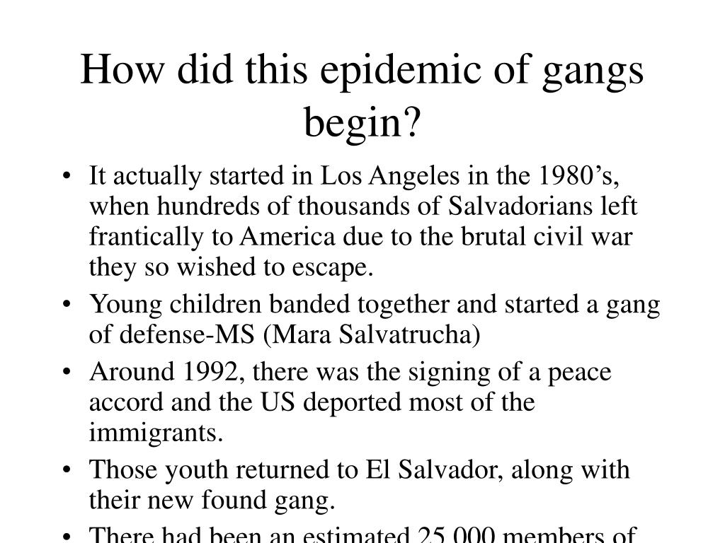 How did this epidemic of gangs begin?
