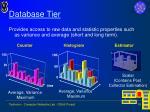 database tier