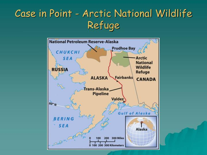 Case in Point - Arctic National Wildlife Refuge