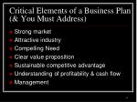 critical elements of a business plan you must address
