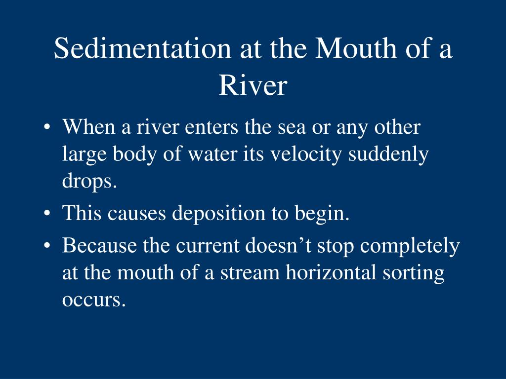 Sedimentation at the Mouth of a River