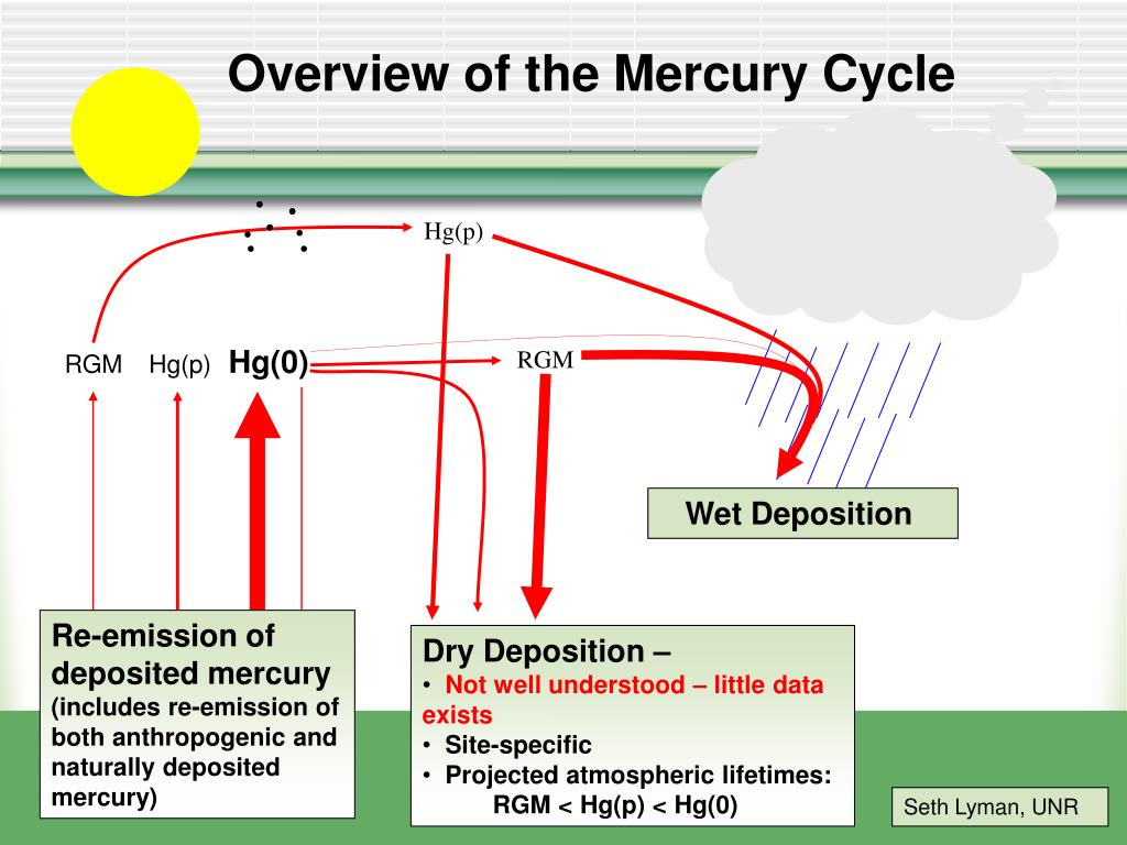 Overview of the Mercury Cycle