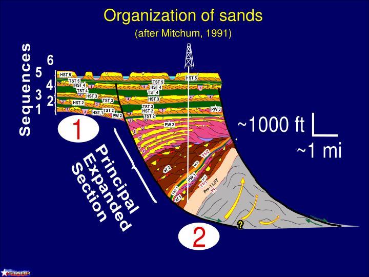 Organization of sands