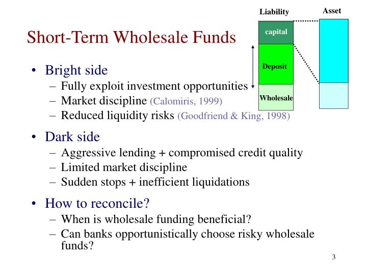 Short term wholesale funds