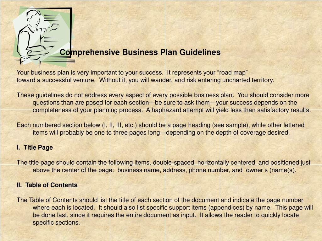 Comprehensive Business Plan Guidelines