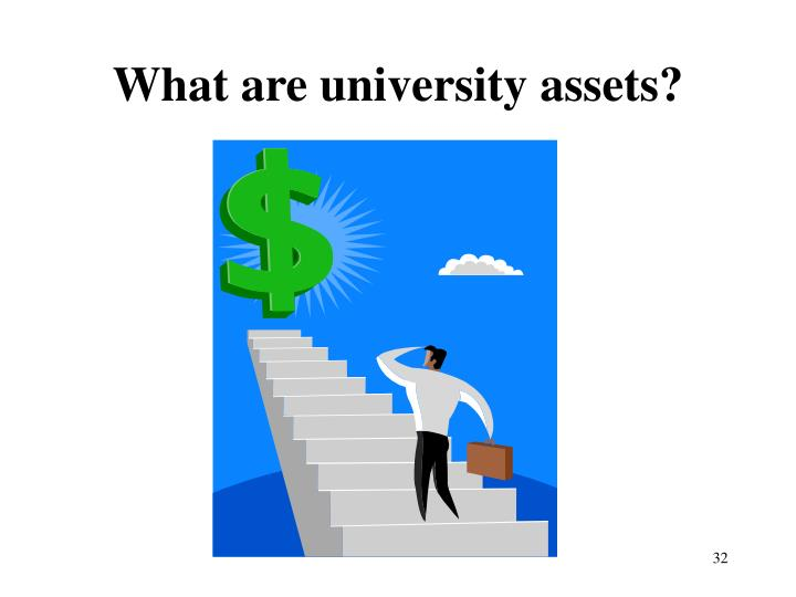 What are university assets?